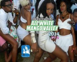 ALL WHITE 20142