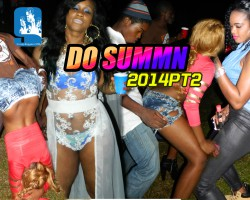 DO SUMMN 20142