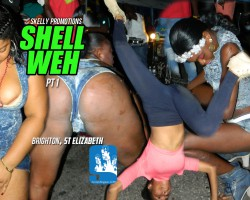 shell weh1
