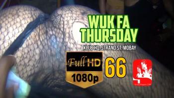 WF 66HD